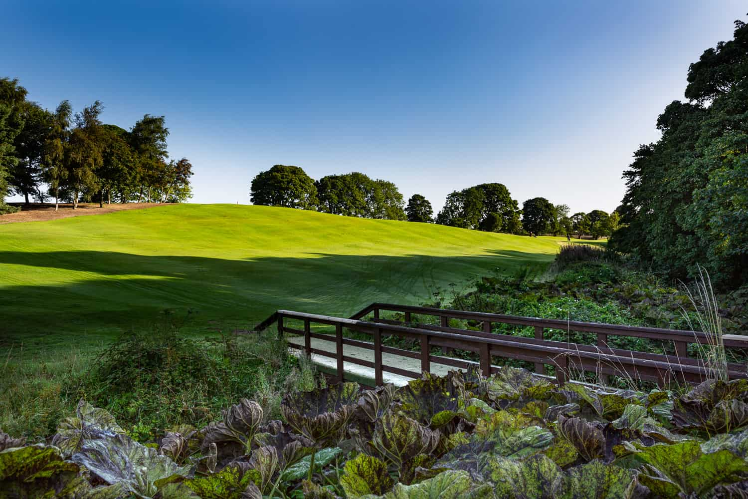 Uphall_Golf_Club_Course_Images (2 of 32)