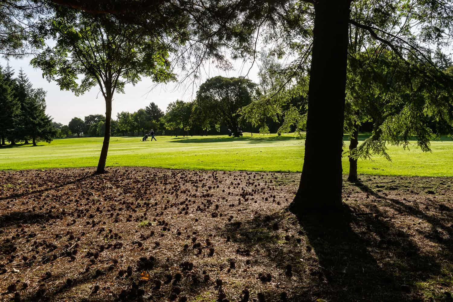 Uphall_Golf_Club_Course_Images (8 of 32)